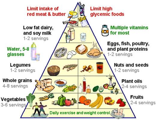 Diet Kolesterol Cara Termudah Turunkan Kolesterol